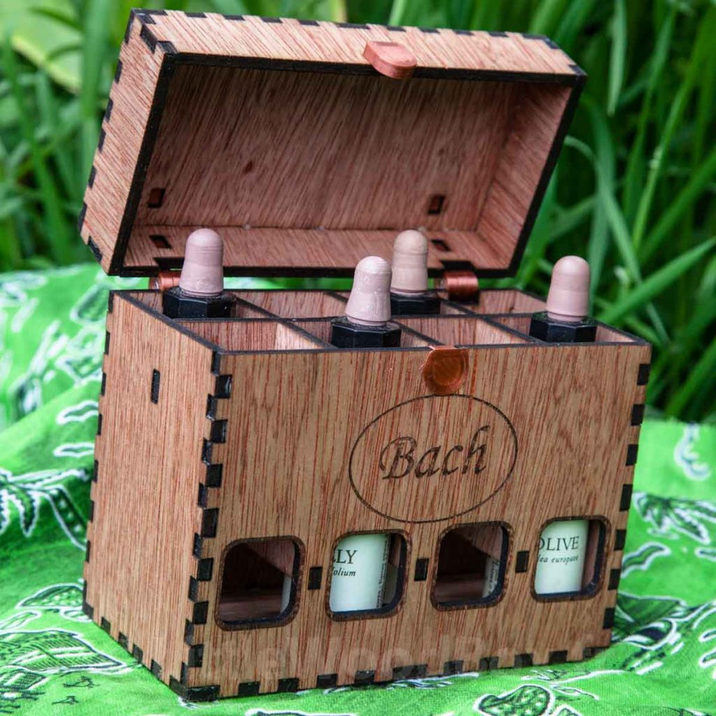 bachbox8-2