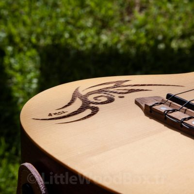 ukulele-4